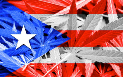 Gobernador pone fin a las pruebas de detección de Marihuana