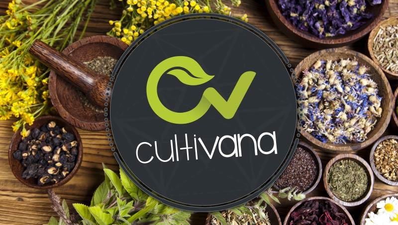 7 Plantas Medicinales para combinar con Cannabis